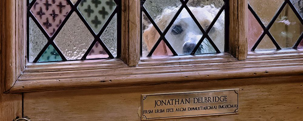 dog through music studio window
